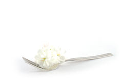 Fork with flower Royalty Free Stock Photography