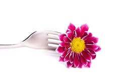 Fork with a flower Stock Images