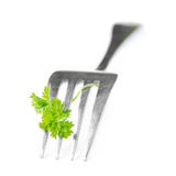 Fork and flower parsley on a white background as an interesting Royalty Free Stock Photo