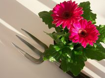 Fork and flowering plant Stock Images
