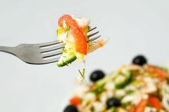 Fork with fresh salad Stock Photos