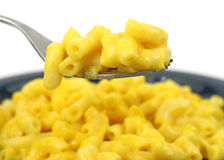 Fork full of macaroni and cheese Royalty Free Stock Photo
