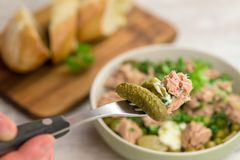Fork holding tuna salad with blur background with bowl of salad. Fork holding tuna salad  with blur backround with bowl of salad Royalty Free Stock Photo