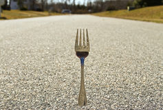 Free Fork In The Road (Concept) Stock Photo - 18644260