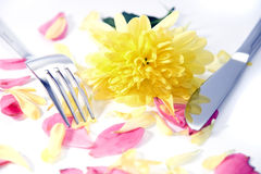 Fork and knife with dahlia and rose petals Royalty Free Stock Photos