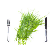 Fork, knife and fresh green grass. Stock Photos
