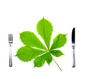 Fork, knife and fresh green leaf. Fork, knife and fresh green leaf on white. Diet concept Stock Photos