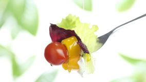 Fork lettuce salad leaves, tomato and pepper topped with olive oil isolated stock footage