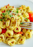 Fork in organic mozzarella tortellini Stock Photography