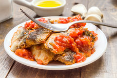 Fork over sardine fillets with tomato sauce. On wood Royalty Free Stock Photo