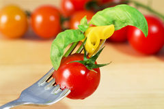 Fork with pasta, tomato and basil Royalty Free Stock Images