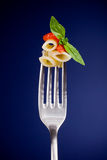 Fork with pasta and tomato sauce Stock Image