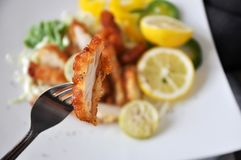 Fork on Piece of Deep Fried Chicken. With dish on background stock image