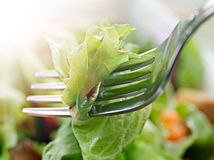 Fork piercing  lettuce Stock Photo