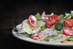 Fork and Plate with Fresh Salad and Ranch Dressing. Forkful and plate of homemade fresh salad with buttermilk ranch dressing, tomatoes, broccoli, cabbage and stock photos