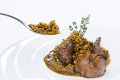Fork and rice with rabbit Stock Photos