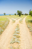 Fork roads Stock Photography