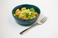 Fork and Salad Alone Stock Images