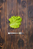 Fork and Salad Leaf. On dark table Royalty Free Stock Photo