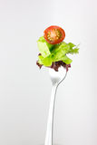 Fork with salad from vegetables. Royalty Free Stock Images
