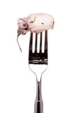 Fork with seafood squint Royalty Free Stock Images