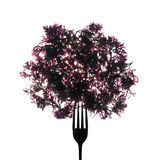 Fork with seaweeds Royalty Free Stock Photos