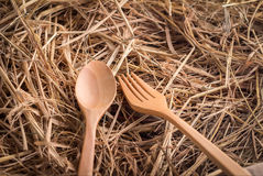 Fork and spoon on dry grass Royalty Free Stock Photography