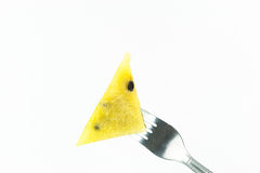Fork stab on yellow watermelon isolate Stock Images