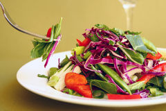 Fork Taking Salad From a Plate Royalty Free Stock Photo