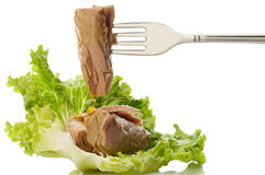 Fork with tuna and salad Stock Images