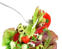 Fork with vegetable salad and salad in a bowl Royalty Free Stock Image