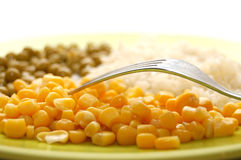 Fork and vegetarian food in plate Stock Photo