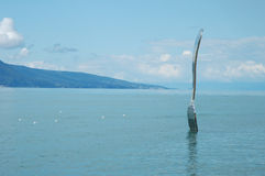 Fork in water in Vevey at Geneve lake in Switzerland Stock Photo