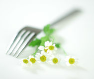 Fork With Flowers Of Camomile Royalty Free Stock Photo