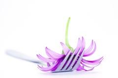 Fork y flor Fotografía de archivo libre de regalías
