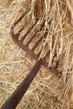 Fork y heno Fotografía de archivo libre de regalías