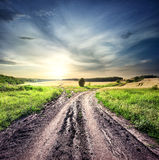 Forked dirt road Stock Image