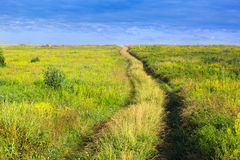Forked footpath on a grassy valley and blue cloudly sky Stock Photos