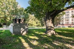 Forked trunk of an old oak in the yard of Moscow State University, Russia. Stock Photos