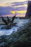 Forkes Washington de la playa del empuje del La fotos de archivo