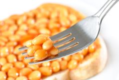 Forkful Of Baked Beans Royalty Free Stock Photography