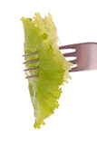 Forkful of lettuke Stock Photos