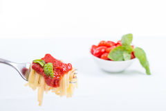 Forkful with succulent and tasty spaghetti with tomato sauce Stock Photography