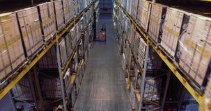 Forklift βάζει το φορτίο στο ράφι στην αποθήκη εμπορευμάτων Εργασία forklifts στην αποθήκη εμπορευμάτων φιλμ μικρού μήκους