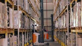 Forklift σε μια μεγάλη σύγχρονη αποθήκη εμπορευμάτων, εργασία των forklifts σε μια αποθήκη εμπορευμάτων, ροή της δουλειάς σε μια  απόθεμα βίντεο