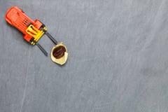 Forklift σκηνή φασολιών καφέ ανελκυστήρων Στοκ φωτογραφίες με δικαίωμα ελεύθερης χρήσης