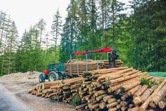 Forklift ciężarówka chwyta drewno w drewnianym zakładzie przetwórczym obraz stock