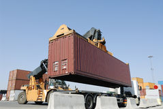 Forklift moving container Stock Image