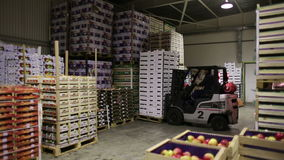 Forklift in storage room of goods
