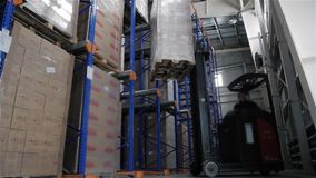 Forklift Truck Driver unloading Pallet In Storage Warehouse. HD, Timelapse stock video